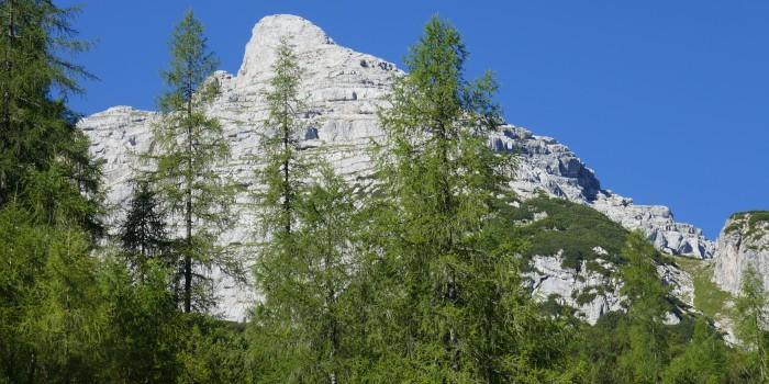 Ein Schmankerl für geübte Alpinisten