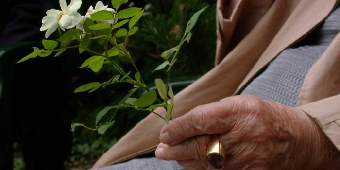 Ist Demenz bald heilbar?