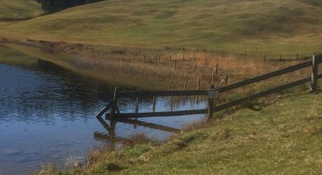 Lieblingsplatzerl: Der Seewaldsee in St. Koloman