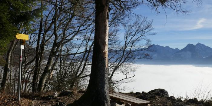 Auf heiligen Spuren: Die Falkensteinrunde