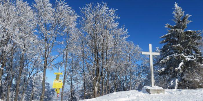 Stadt-Skitour auf den Gaisberg