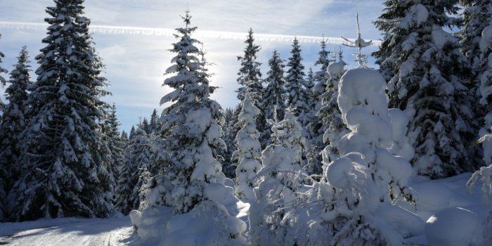 Eine Skitour mit Aussicht
