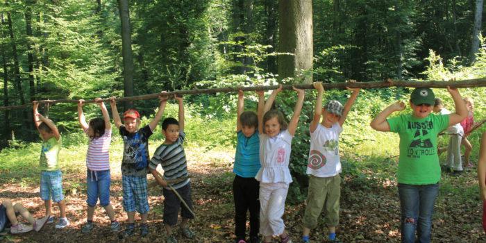 Wie Herr Vogel Kinder für den Wald fasziniert