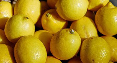 Gesundheit: Warum die Zitrone gut tut