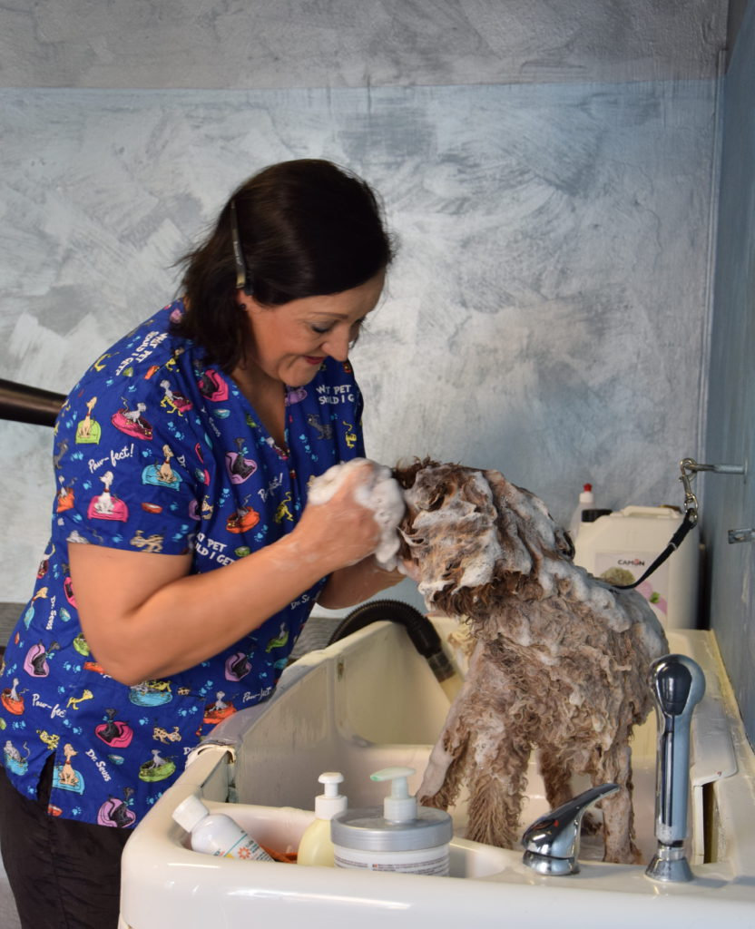 Keine Angst vor Shampoo: Katharina Leeder wäscht Mira in der Badewanne. Fotos: Suchanek