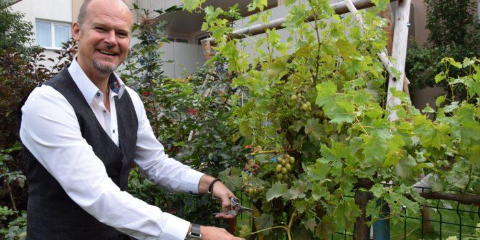 """Die """"Weinbauern"""" von Itzling"""