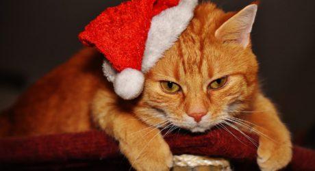 Weihnachtliche Bescherung ohne Happy End
