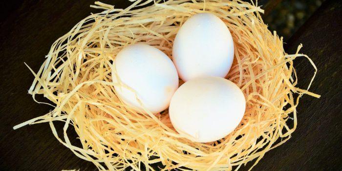 Warum es wieder weiße Eier gibt