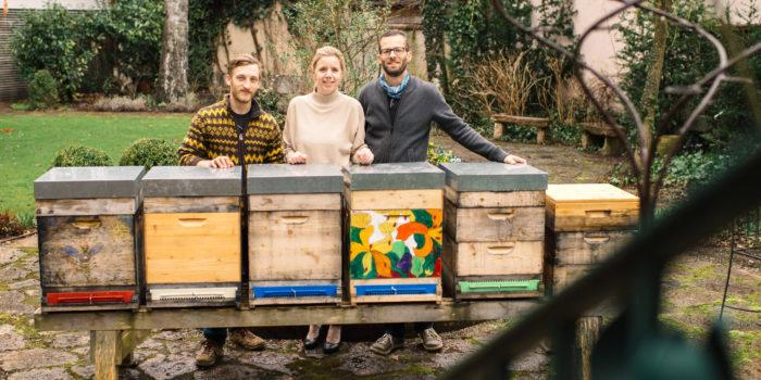 Im Hotel ziehen jetzt die Bienen ein