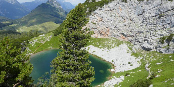 Großartige Szenerie: Die große Seehornrunde