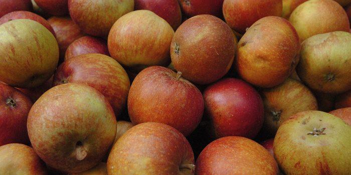 Im Fall der Fälle: Apfel gerieben
