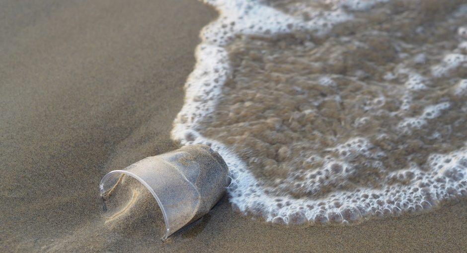 Die Plastikflut stoppen! Jeder Beitrag zählt