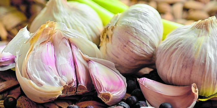 Was Joopi Heesters wusste: Knoblauch hält uns fit