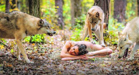 Sie hat keine Angst vor dem Wolf