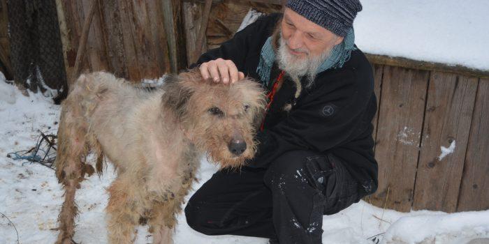 Wo Tierschutz auch dem Menschen hilft