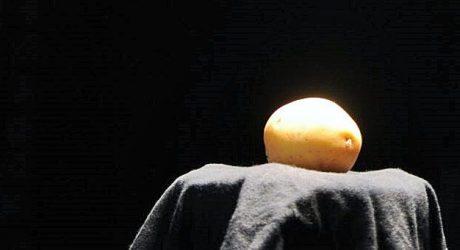 Was so ein Erdäpfel so alles kann