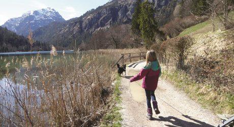 Wandern für Groß und Klein: Thumsee-Rundweg