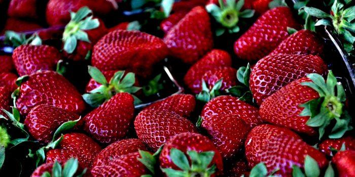 Prickelnder Brennnessel-Erdbeer-Tee